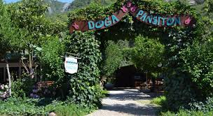 Doga Pension Olympos