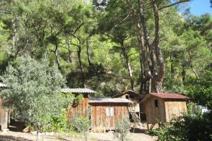 Saban Tree Houses Olympos